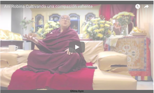 Cultivating a brave compassion