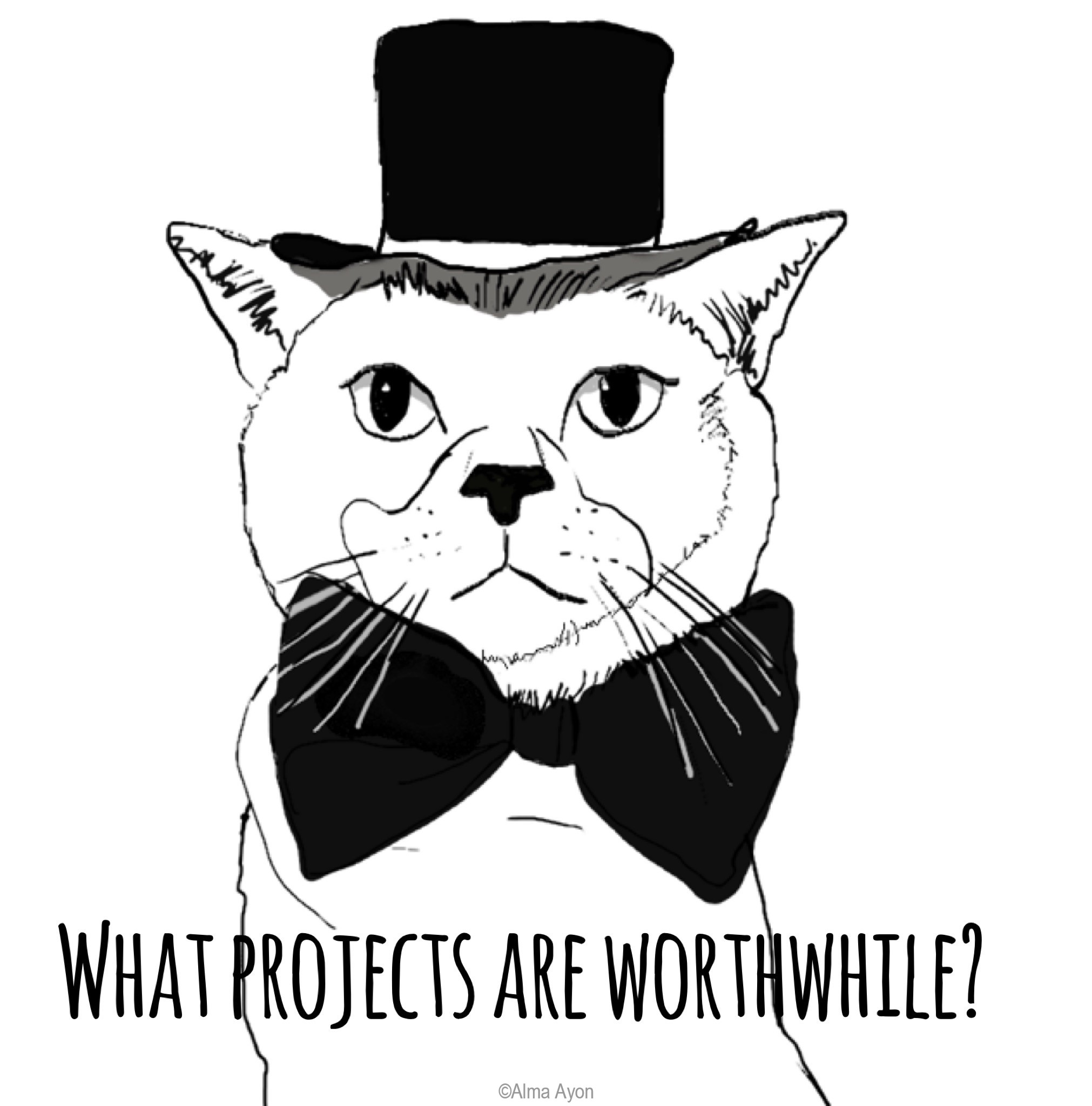 What projects are worthwhile?